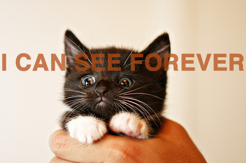 i can see forever