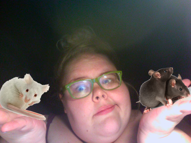mice and me