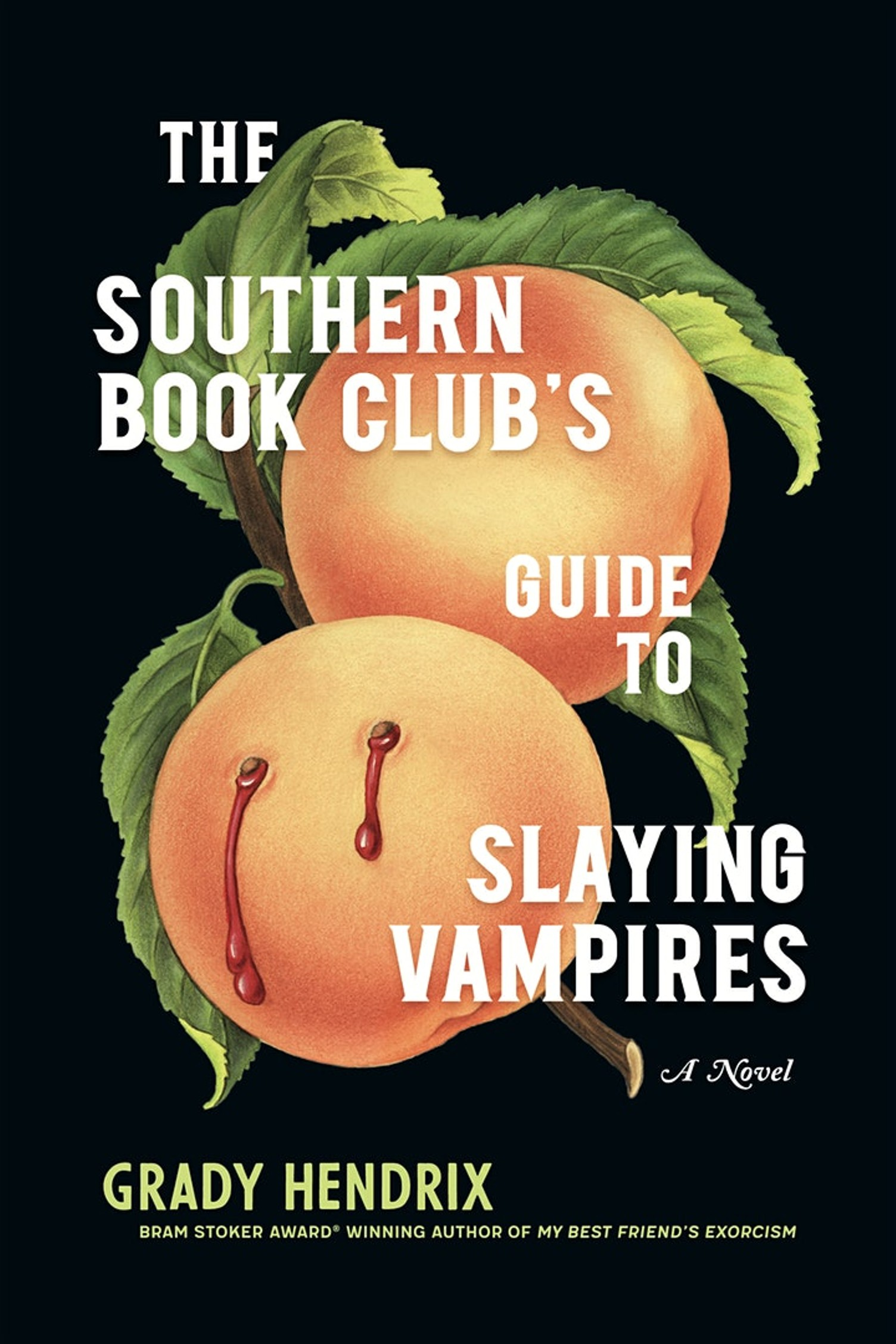grady hendrix, the southern book club's guide to slaying vampires